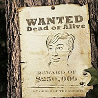 Photo effect - Wanted by order of the sheriff